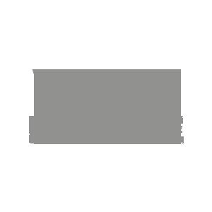 Vector Brigade